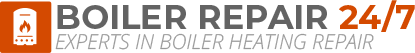 West Ealing Boiler Repair Logo